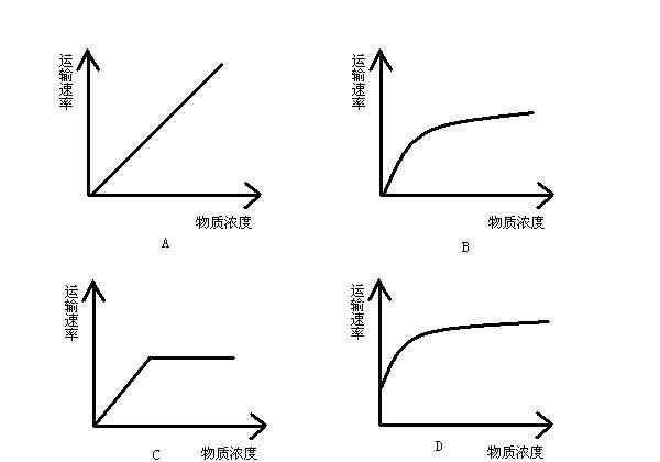 简单扩散 横坐标物质浓度,纵坐标转运速率,简单扩散、易化扩散、主动转运的图象分别是怎么样的?描述一下并说明原因.